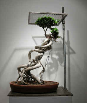 Shen_shaomin_bonsai-no44_plant_iron_tools_126x80x58cm_2008