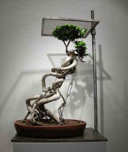 Shen_shaomin_bonsai-no44_plant_iron_tools_126x80x58cm_2008