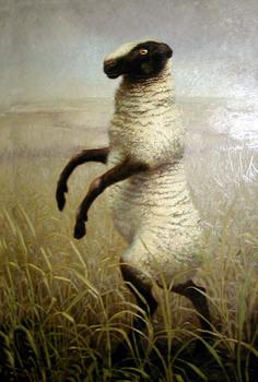 Standing_sheep