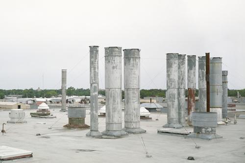 Afriges-20081113-11