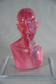Judy_chicago__toby_head_with_open_eye_1