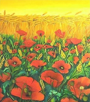 Field_poppies