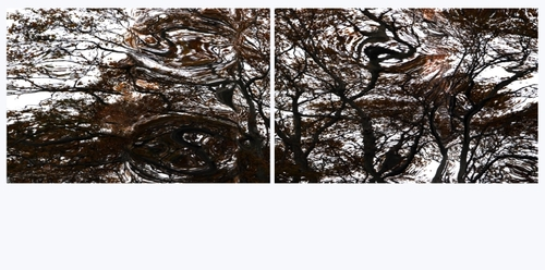 Liquid_trees_diptych_033_sample