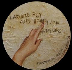Ladybird_b