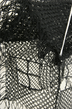 Carpenter__j_07__house_in_black_lace__detail