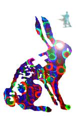 Rabbit_jpeg