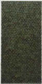 00920100615