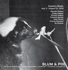 Countrymusic10image