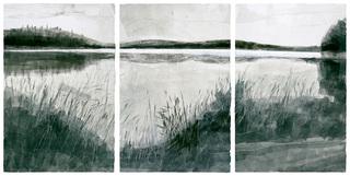 Pond-all