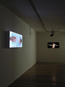 Yael_schmidt_sean_branagan_gooden_gallery_london