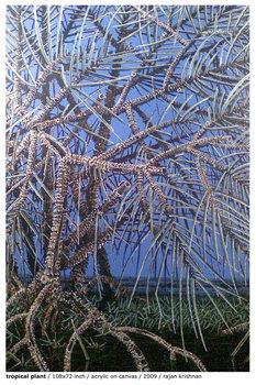 Tropical-plant2009