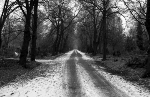 Winter_road_thumbnail