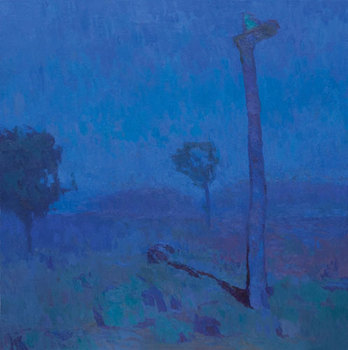 Joshua-tree-at-night