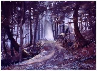 Hemlocks__arden_forest__ny