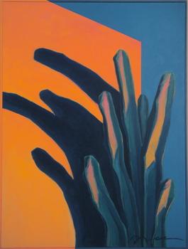 Cactus_shadow