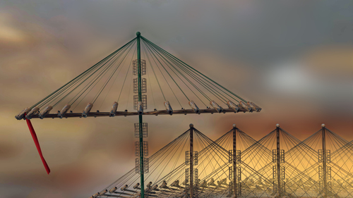 Umbrellakites1