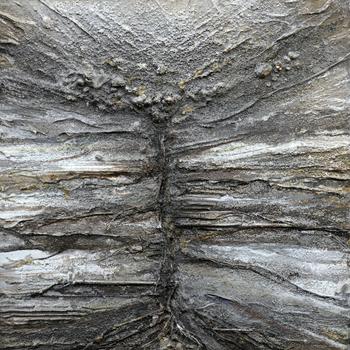 Belsay_quarry_gardens_series_black___goldas