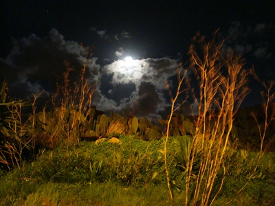 Fields_at_night_-_mgarr