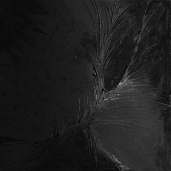 Black__5_36x36_150