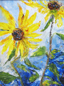 Sunflower_burn