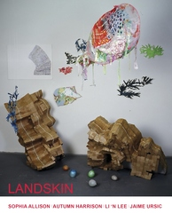 Landskin_pc_front_no-bleed_crop
