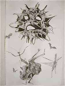 Pod_owl_bats_mantis_locust