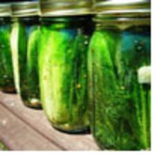 0810_pickles