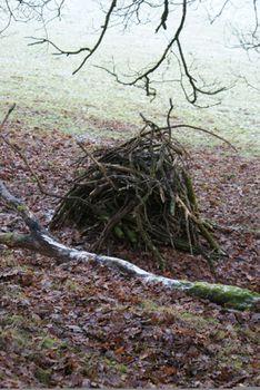 Winter_sticks