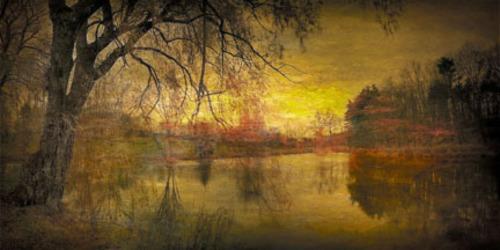 Dan_burkholder_-_tree_and_pond_in_fall