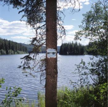 Schmidt_lake
