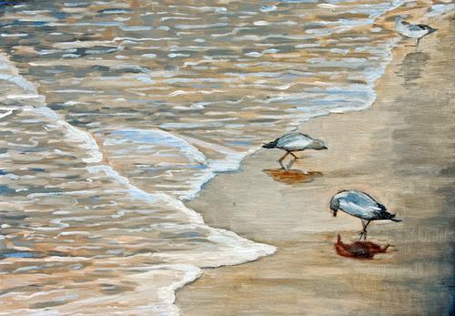 20100809103749-seabirdsgallery