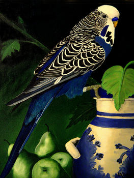 20100811192809-blue_budgie__oil__canvas_18_x_20