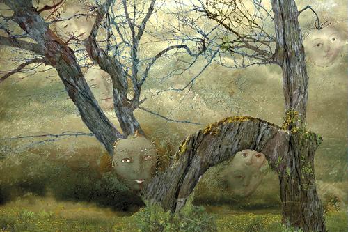 20100814054626-1005_elfenwald