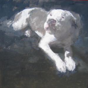 20100816113704-sad_dog_dark
