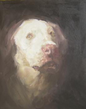 20100816114053-sad_dog_lost_3