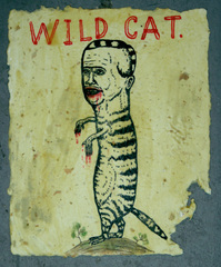 20100817121222-fred_stonehouse_wild_cat