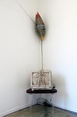 20100817161135-omc-gallery-artslant-ivo-dekovic-img_5567