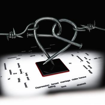 20100826011337-nailedheart