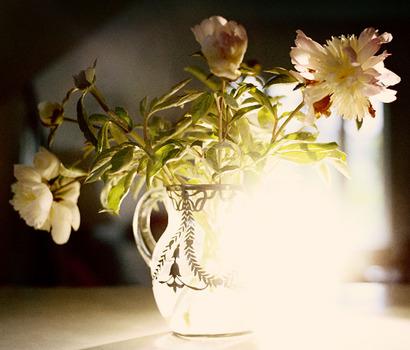 20100902104002-vase