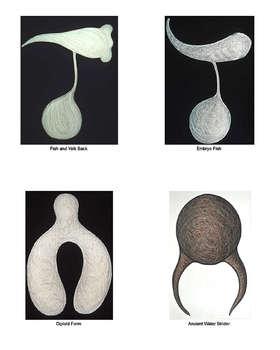20100902105824-drawings-neubauer
