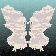 20100902122225-papillon_khavaran