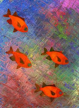 20100907205818-black_bar_soldier_fish
