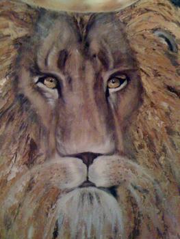 20100907220359-lion_close_up