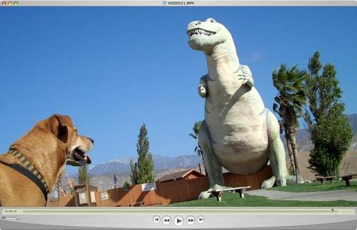 20100908052929-garcia_dinosaur