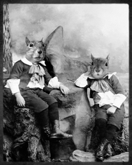 20100909170255-grand_ole_bestiary_the_squirrelton_twins_digital_print