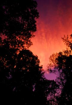 20100909180931-clouds01