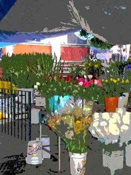20100912184417-flower-market-juana-lisa300dpi