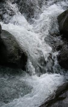 20100913062028-nature_s_sculptor_