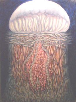 20100913111847-jellyfish