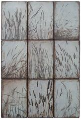 Blue_wild_grasses
